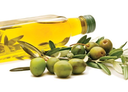 Olive Industry